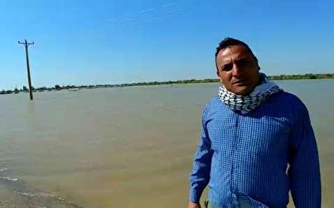 نابودی پنجاه هزار هکتار زمین کشاورزی در سوسنگرد