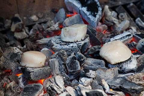 تکنیک برشته کردن غذا روی زغال
