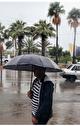 آخرین وضعیت آب و هوا و ترافیک جادهای؛ سوم فروردین...
