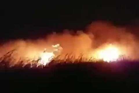 آتش سوزی نیزارهای ماهشهر