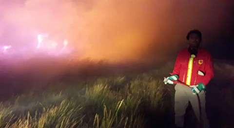 آتش سوزی عظیم پناهگاه حیات وحش میانکاله