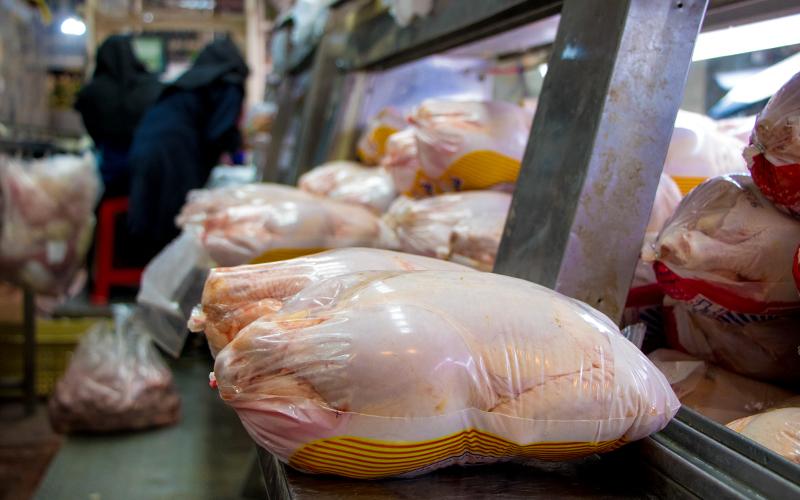 چرا با تصمیم جدید وزارت جهاد کشاورزی، باید شاهد جهش دوباره قیمت مرغ باشیم؟