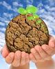 شبکه سمنهای محیط زیستی، تنها ضامن آبروی کلانتری!