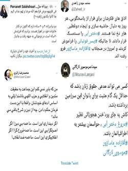 سلحشوری: دروغ است، از خدا بترسید/ زاهدی و موسوی لارگانی قبل از موضعگیری از همکارشان سؤال میکردند!/ آیا پای دختر آبی در میان است؟