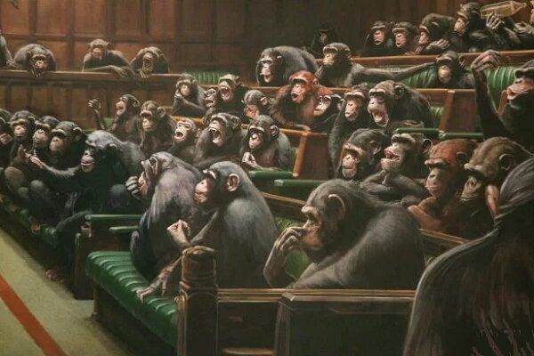 9.9 میلیون پوند برای شامپانزههای پارلماننشین بنکسی
