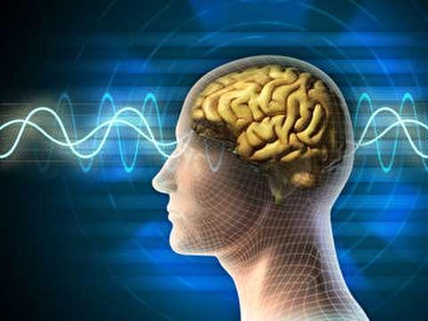 انواع امواج مغزی و کارکردشان چیست؟
