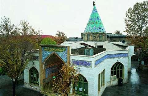 کهنترین چنار پایتخت در تاریخیترین نقطه تهران
