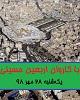 تردد ۲۱۵ هزار تن از مرز مهران در ۲۴ ساعت گذشته/ قدردانی رئیس جمهور از میهماننوازی عراقیها/ فیلم: حضور دانشجویان در اربعین، مثبت است یا منفی؟