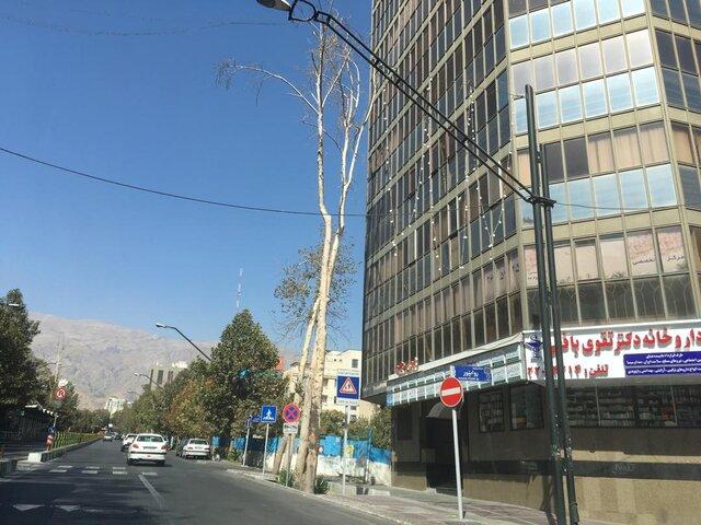 خروج یک طرح جنجالی از دستور کار شورای تهران بعد از چندسال!