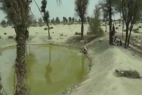 برداشت عجیب آب در سیستان و بلوچستان