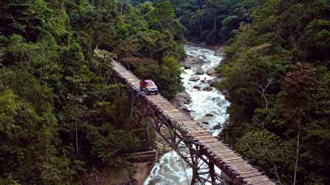 آزمون سه خودرو در عکاسی از حیات وحش کلمبیا