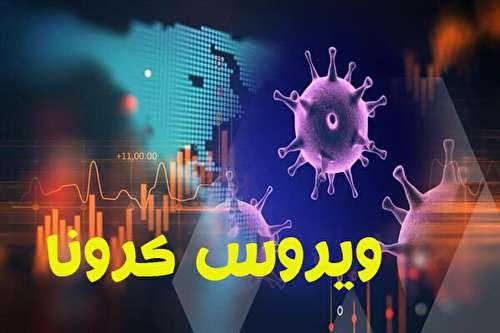 ۴ نکته جدید درباره شیوع جهانی ویروس کرونا در ساعات اخیر