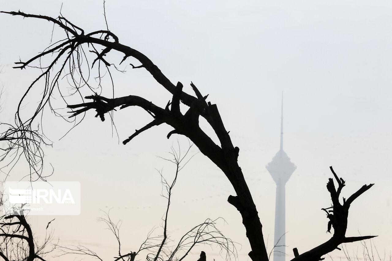 نه چشم انتظار تعطیلی تهران باشید و نه اجرای قانون «هوای پاک»!