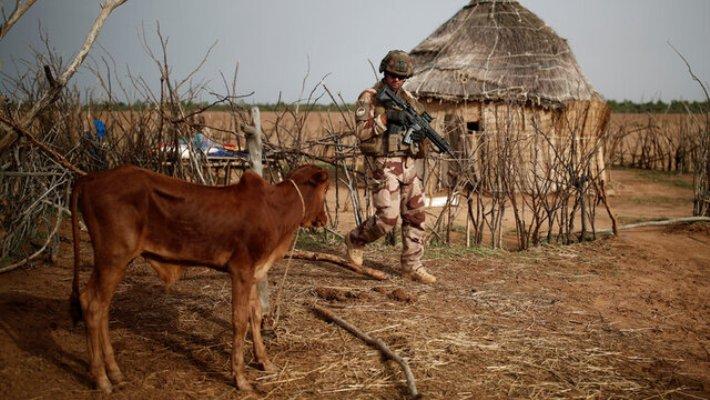 زخمی شدن ۶ سرباز فرانسوی در حمله انتحاری در مالی