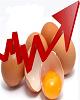 بی تدبیری در اوضاع بازار تخم مرغ/ ترفند های جدید برای گران کردن تخم مرغ