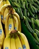 جهش ۱۰۰ برابری قیمت خیار در یک سال / گزینه بعدی برای بحران تازه در بازار میوه معرفی شد!