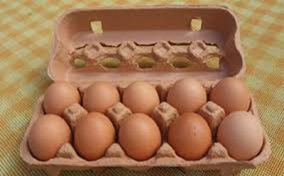 رانت روزانه ۱۶ میلیارد تومانی در بستهبندی تخم مرغ
