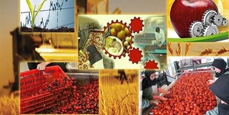 تعداد ۵۱۸ روستا بازار در کل کشور ایجاد میشود