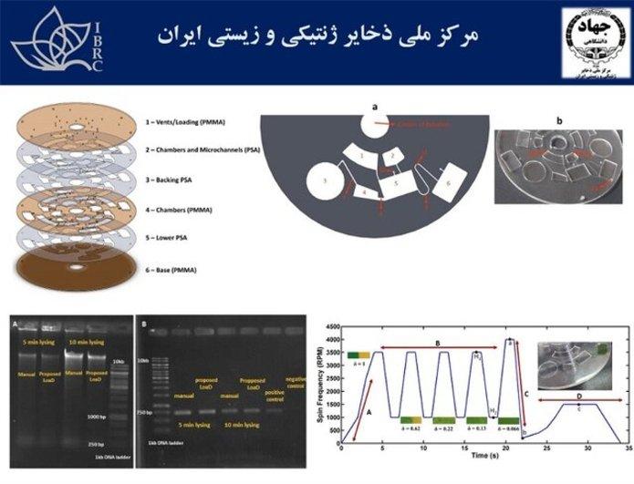 قیمت گوشیهای پرطرفدار در بازار امروز ۱۳ اسفند