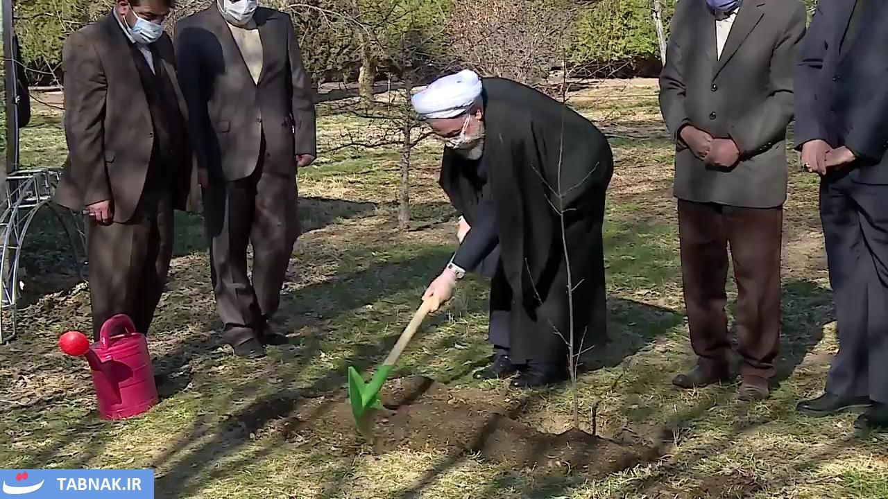 ايران | الإيرانيون یحتفلون بيوم الشجرة والرئيس يبدأ التقليد السنوي