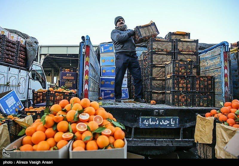 فروش مستقیم میوه توسط باغداران در۸۰ نقطه تهران