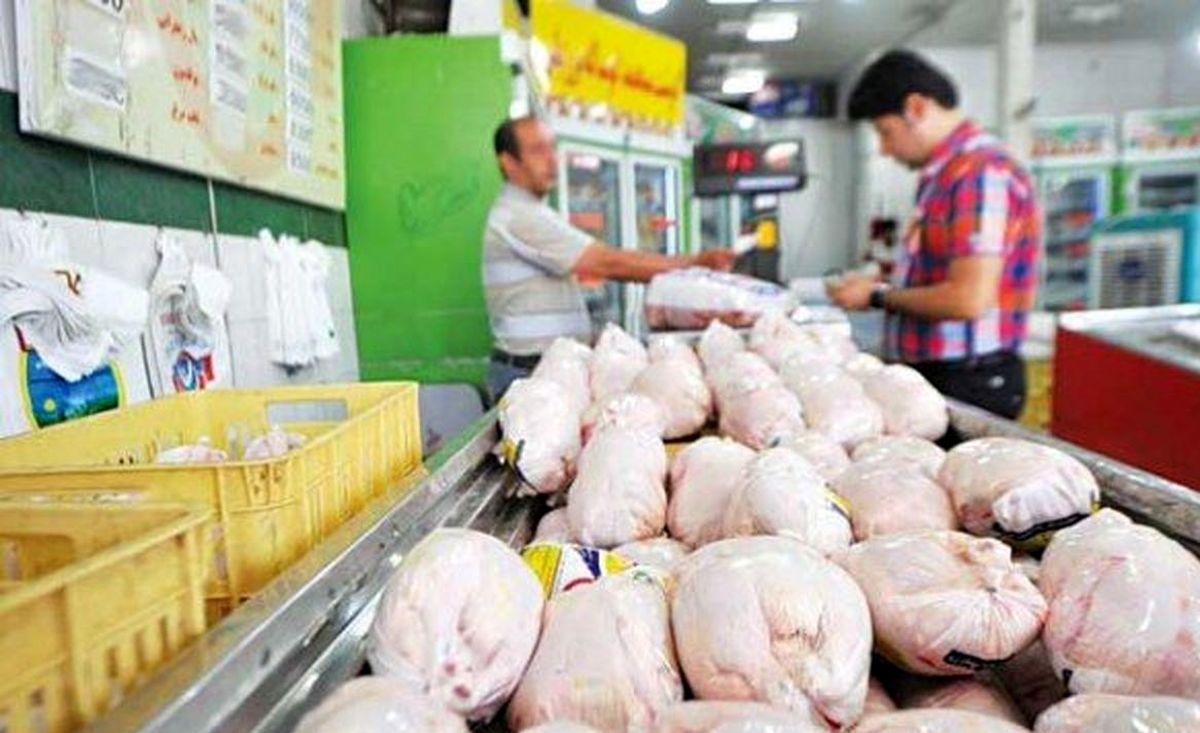 قیمت مرغ رکورد زد؛ واردات آن کلید خورد/ توان صادرات یک میلیون تن مرغ داریم، ولی واردکننده میشویم!