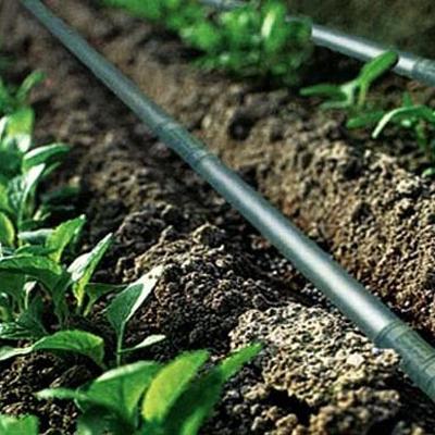 لوله پلی اتیلن در کشاورزی