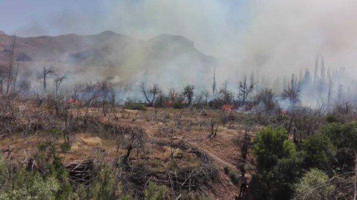 آتشسوزی در کوهپایههای دارآباد