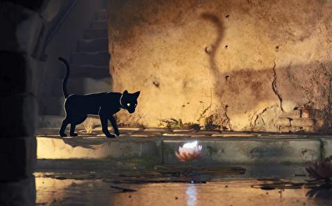 انیمیشن کوتاه پروانه