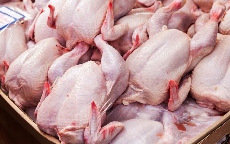 عرضه نکردن مرغ مشمول ۷۰ درصد جریمه است