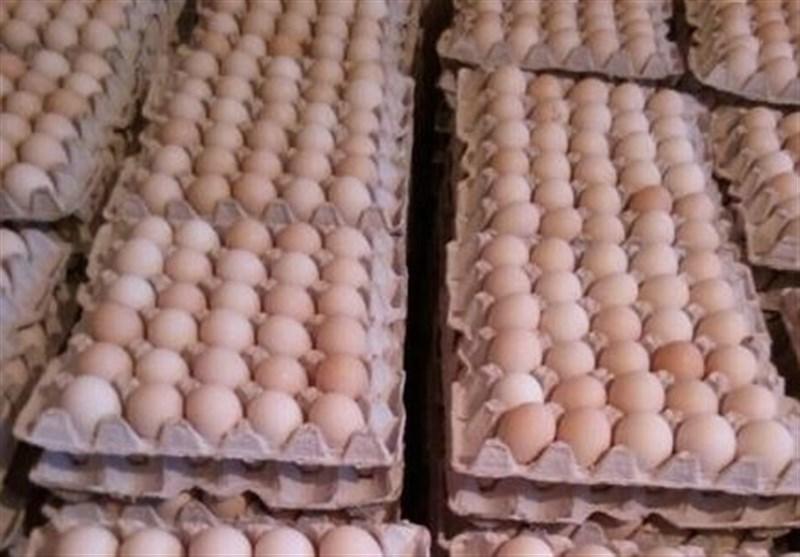 تخم مرغ دوباره دو نرخی شد