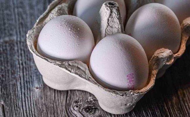 کاهش قیمت تخم مرغ طی یک ماه گذشته