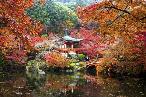 کیوتو از نمای نزدیک