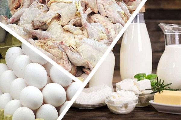 قیمت تخممرغ در روزهای آینده کاهش مییابد