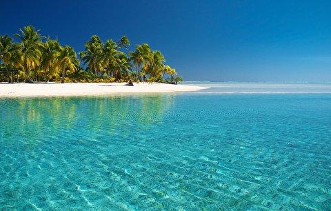 ساحل اقیانوس آرام در قاب 4K