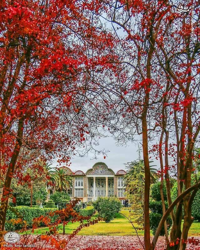 تصویر پائیزی از باغ ارم شیراز