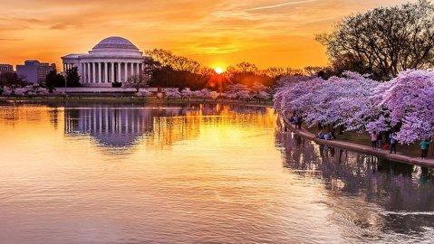 طبیعت واشینگتن در قاب 4K