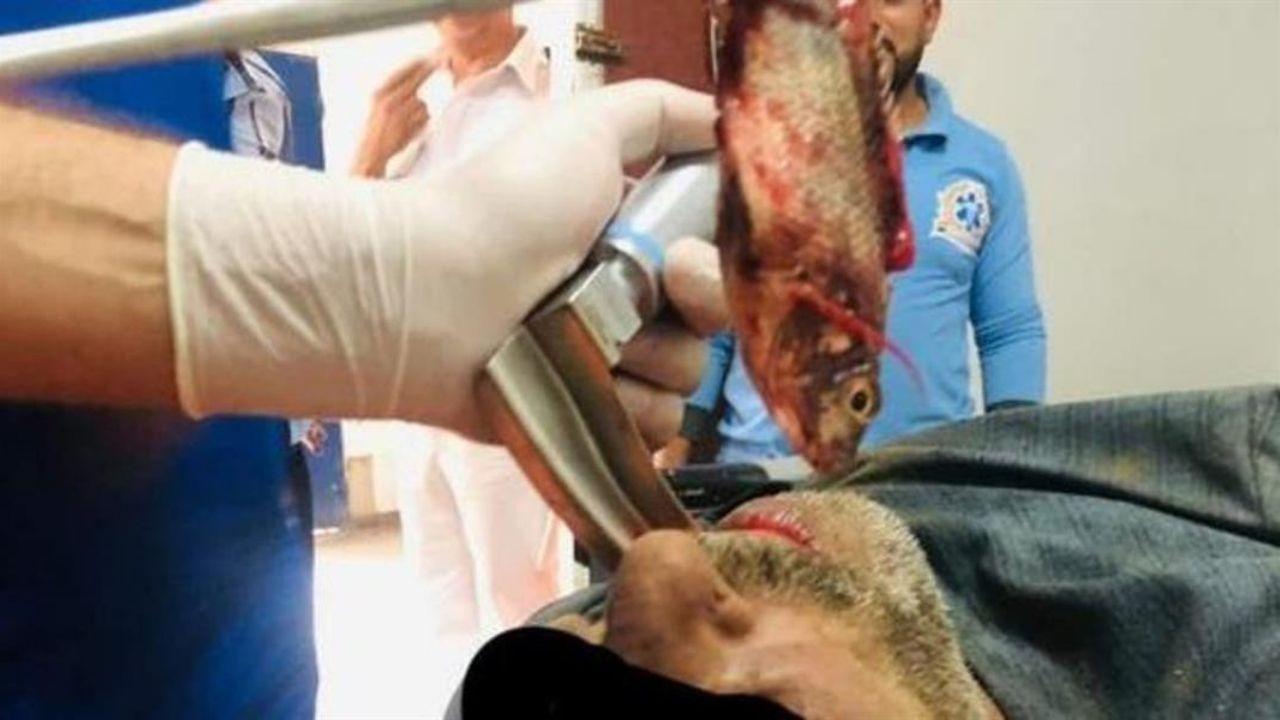 انتقامی که ماهی از ماهیگیر مصری گرفت