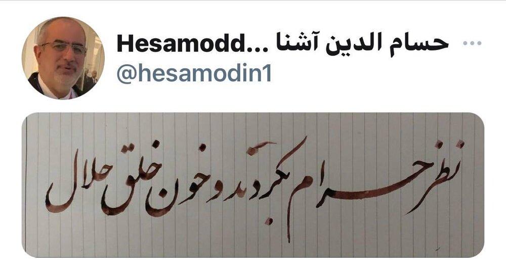 کنایه معنادار حسام الدین آشنا به مجلسی ها
