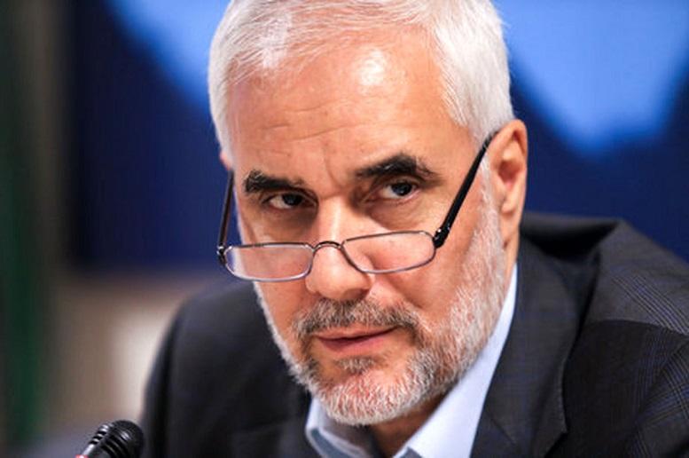 مهرعلیزاده: برنامه اقتصادی آلمان را در ایران اجرا می کنم