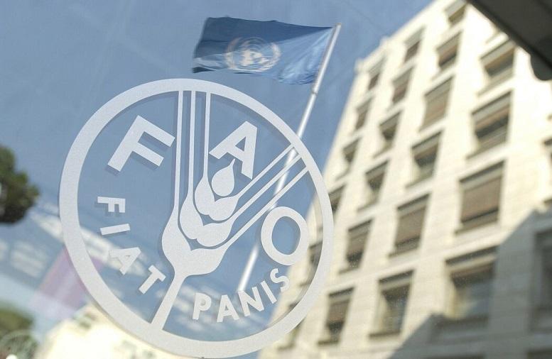 فائو: کرونا تهدیدی برای امنیت غذایی جهانی است