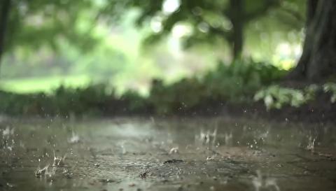 بارش باران در اوج طوفان