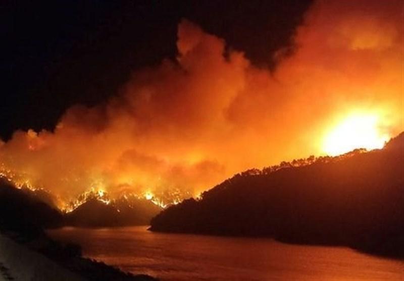ادامه حریق جنگلی گسترده در ترکیه