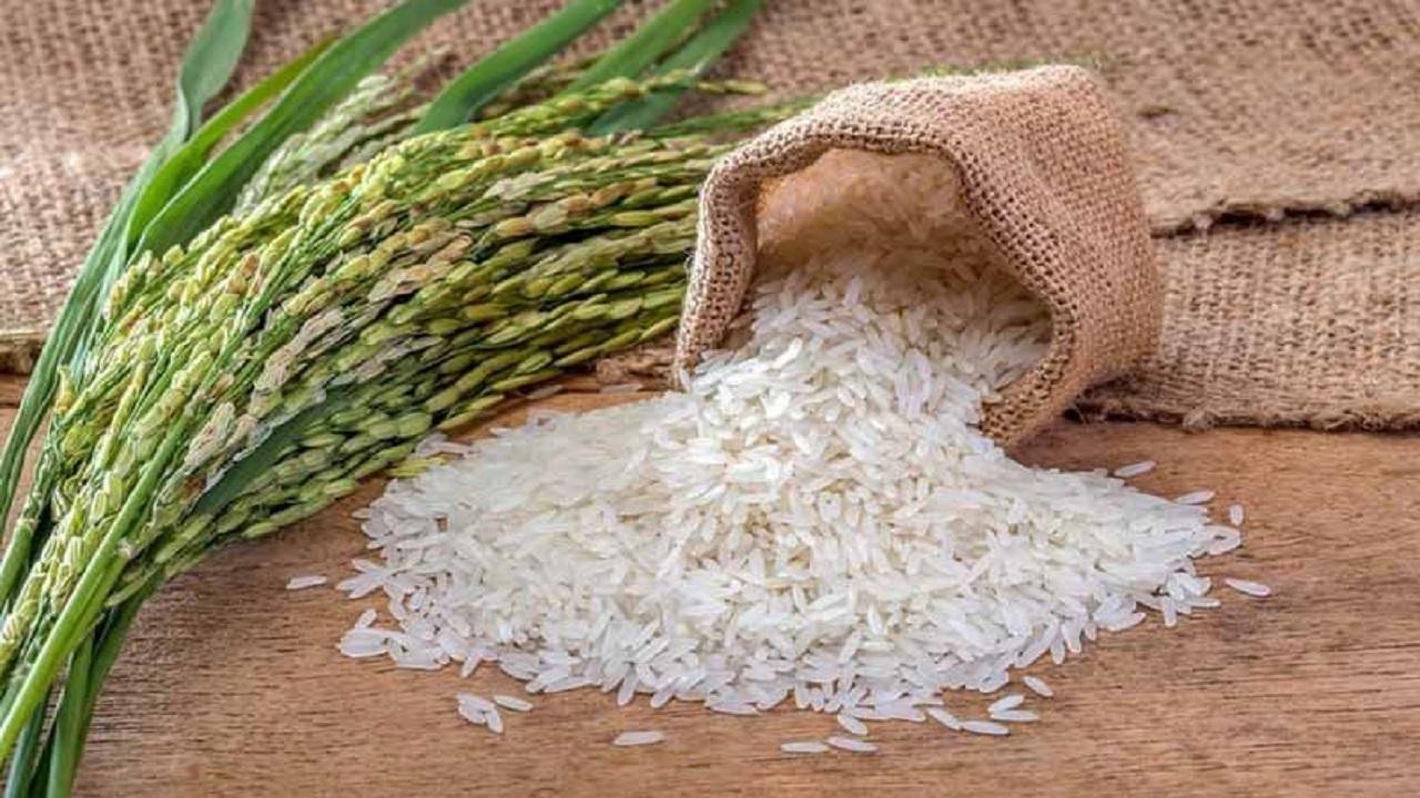 اطلاعیه شرکت مادر تخصصی بازرگانی دولتی ایران در خصوص توزیع برنج در کشور