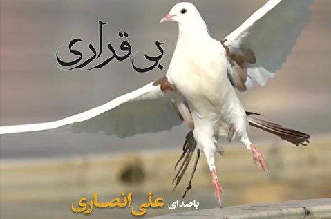 بیقراری؛ علی انصاری