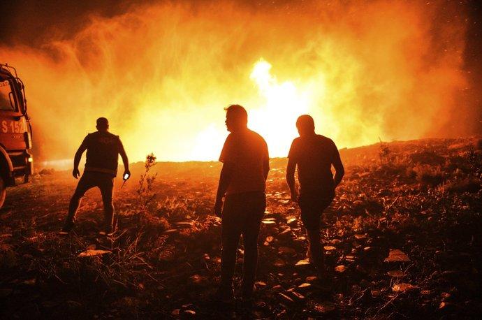 آتش نشانان و شهروندان محلی در تلاش برای مهار آتش در منطقه