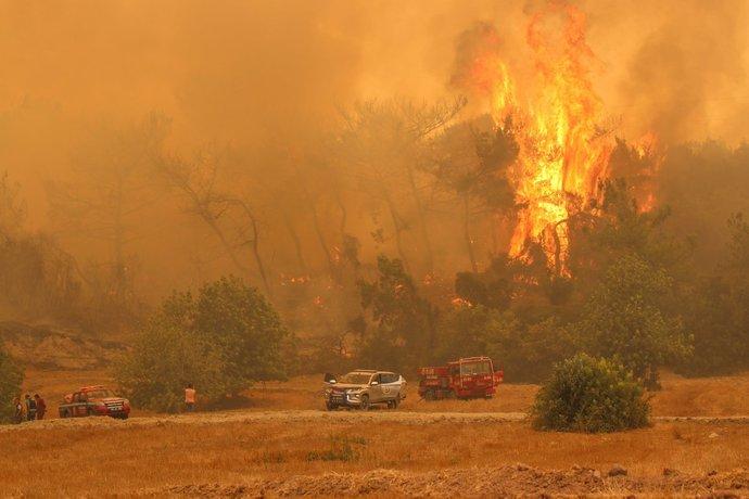 شعله های آتش در منطقه عثمانیه در جنوب ترکیه/ عکس: AA