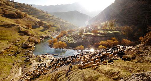 چوپان های دره تنگیور در کردستان Amos Chapple