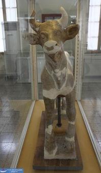 پیکره سفالی گاو نر - اواخر هزاره دوم پیش از میلاد - کشف شده در چغازنبیل خوزستان