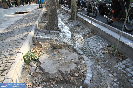 پیمانکار با چه ذهنیتی دور تنه قطع شده سنگ چینی کرده!!!